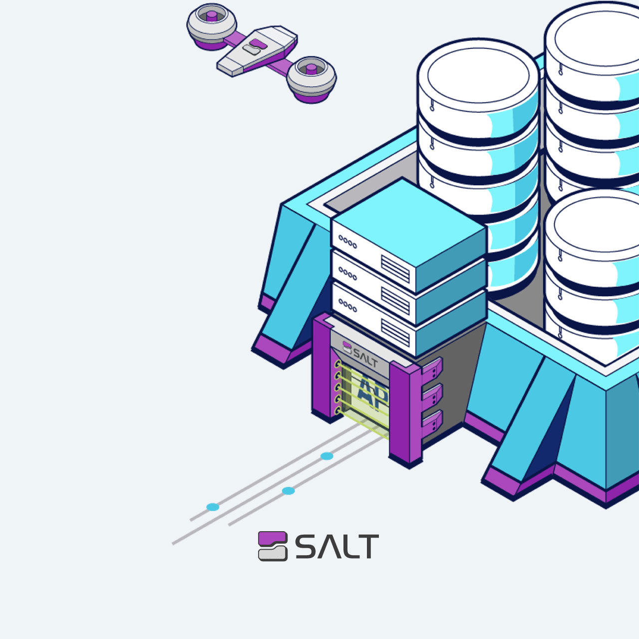 salt-feature-image